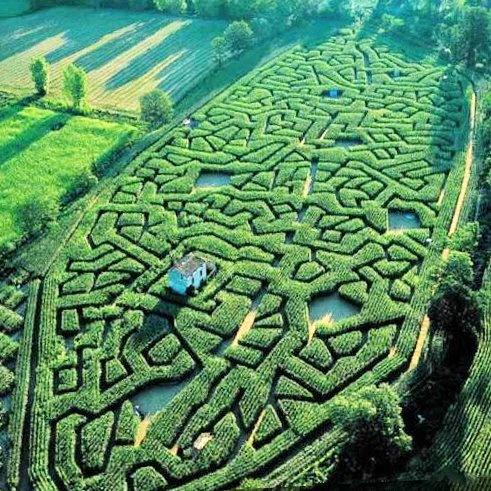 The Maze of Cordes-sur-Ciel, France.