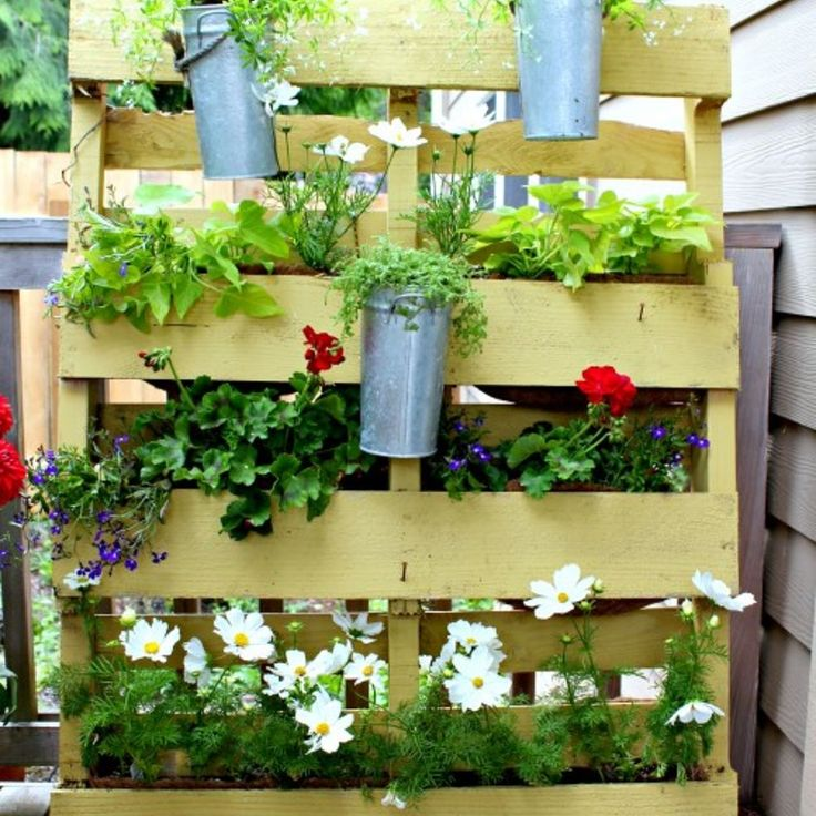 45 best Living Privacy Screens images on Pinterest   Garden ideas ...