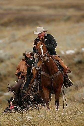 """""""The American Cowboy - Symbol of the American West"""" Photography Workshop - H1P4493 - Photos from our Nature Photography Workshops#top_display_media#top_display_media"""