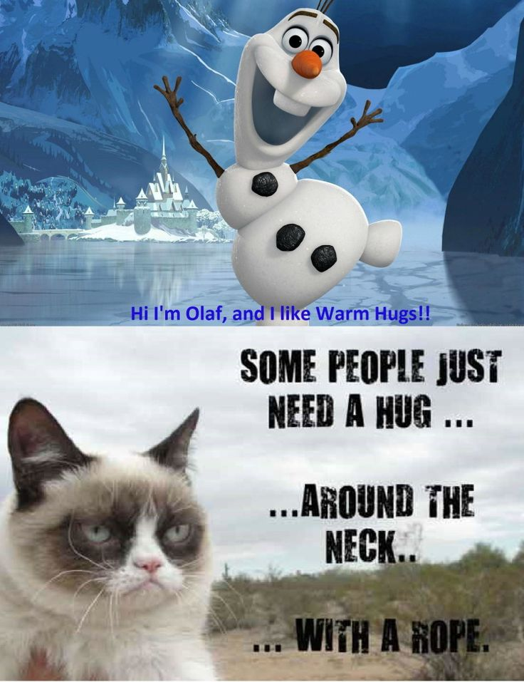 grumpy cat wedding invitations%0A The best part is olaf would probably just think it was a hug and love  grumpycat
