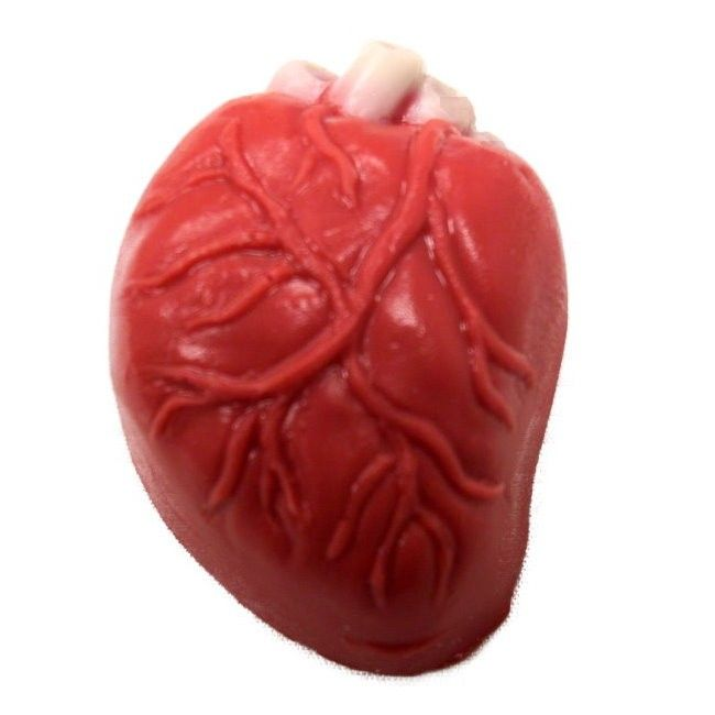 Human Heart Truffle Candy Mold | Chocolate Candy Molds | Molds | Confectionery House