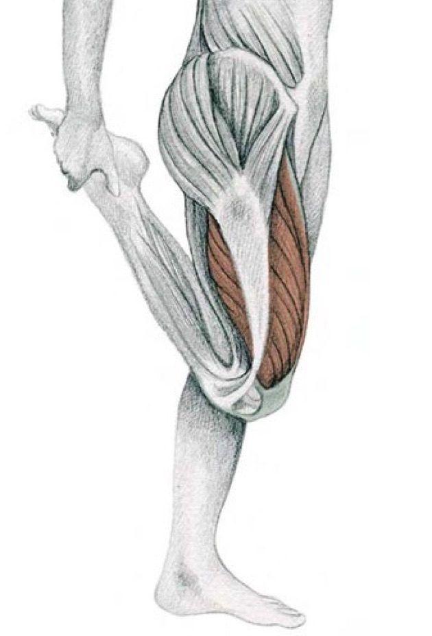 растяжка для мышц ног картинки можете