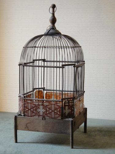 769 best bird cages images on pinterest for Petite cage a oiseaux decorative