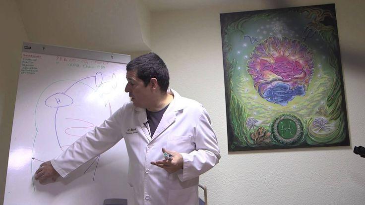 """(s.11-07-15).Curso de Nutrición y Naturopatía: """"EL PH DE LOS ALIMENTOS"""""""