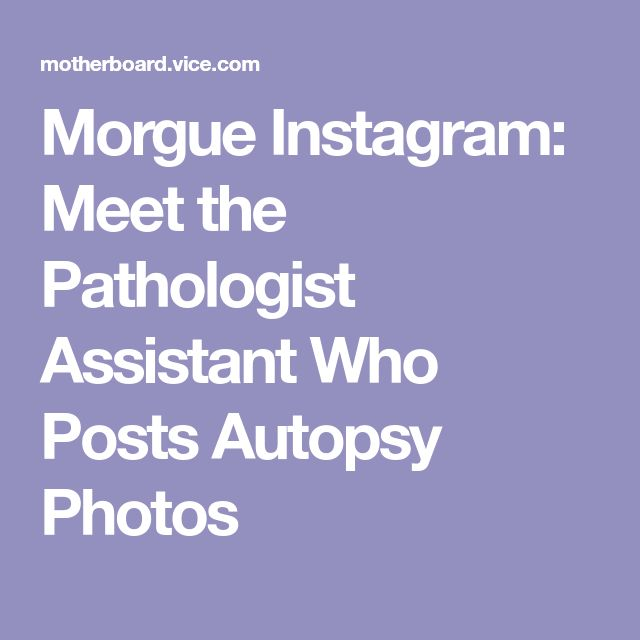 Morgue photos on Pinterest Photos of women, Vintage beauty and - morgue assistant sample resume