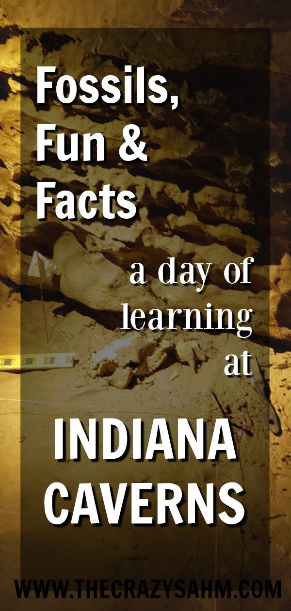 Indiana Caverns A Learning Adventure For Your Kids Travel With