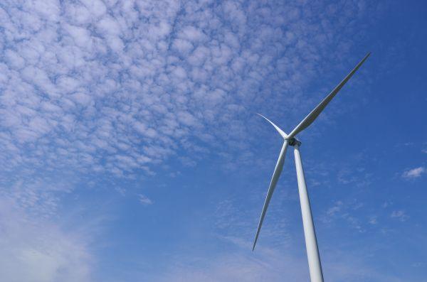 Op land werd er dit jaar voor 222 megawatt aan nieuwe windmolens neergezet. Dat is veel minder dan de 406 megawatt in 2015. Om de doelen uit het Energieakkoord van 6.000 megawatt op land in 2020 en 4.450 megawatt op zee in 2023 te kunnen halen moet het opgesteld vermogen jaarlijks toenemen met gemiddeld ongeveer 700 megawatt op land en 500 megawatt op zee.  NWEA constateert dat met het huidige tempo de doelstelling uit het Energieakkoord voor windenergie op land niet zal worden gehaald…