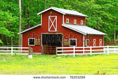 horse barn ideas | stock photo : An old red horse barn in the woods among a buttercup ...