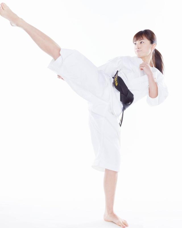 「少林寺拳法 蹴り」の画像検索結果