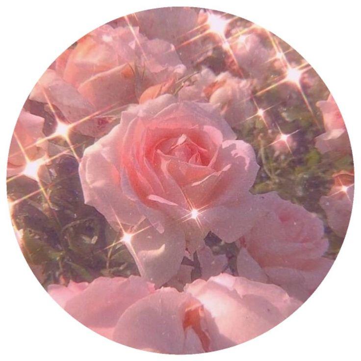 Pink Aesthetic Icons Iconic بينك وردي زهري افتارات ايكونز Vegetables Radish Tumblr