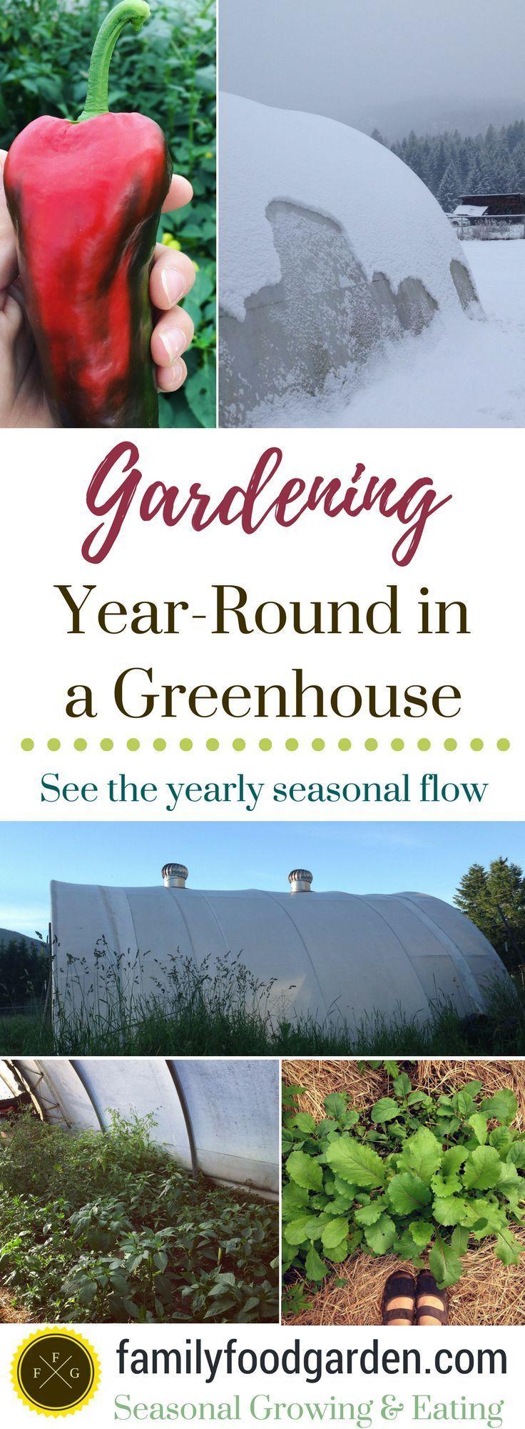 3009 best vegetables images on pinterest veggie gardens organic