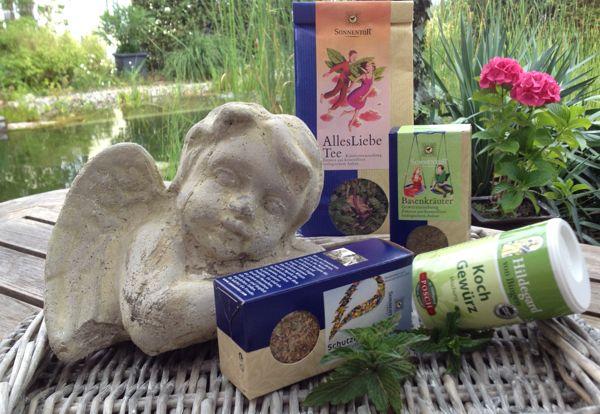 lat. Mentha spicata. Krauseminze ist die meist angebaute Minzart und fast jeder kennt sie unter ihrem englischen  Namen: Spearmint. Sie gab dem Kaugummi ihren Namen, der vor über 50 Jahren in den USA mit ihrem ätherischen Öl erfunden wurde.