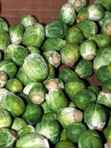 Order one of our weekly specials...Brussels Sprouts! There are great benefits from eating them such as fiber! Ready the article for more benefits.