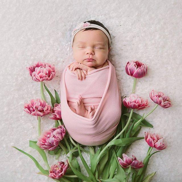 20 Außergewöhnliche Neugeborenen Fotografie Tier ...