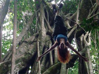 Climb a tree? Rappel down a waterfall? I am down!