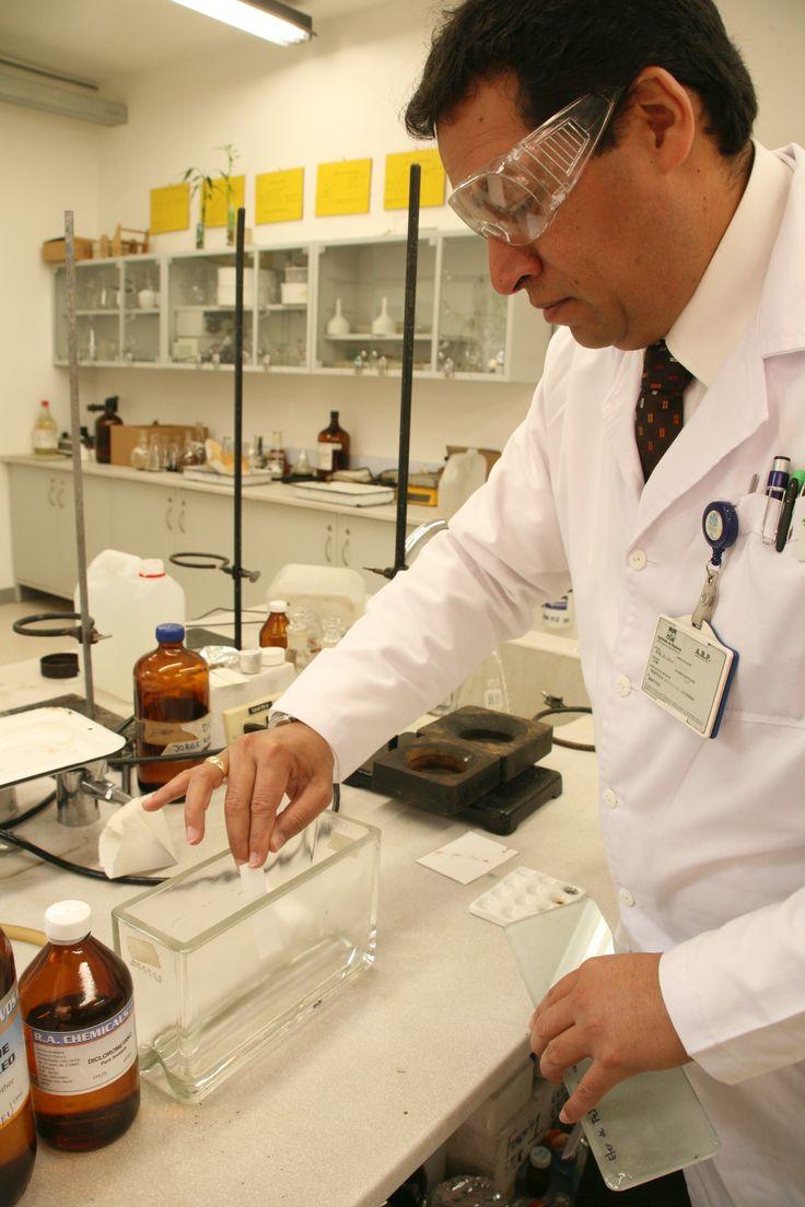 El Grupo de Investigación en Fitoquímica de la Pontificia Universidad Javeriana, Gifuj, liderado por Rubén Darío Torrenegra, también contribuye al conocimiento de la biodiversidad colombiana por medio de estudios científicos, para revelar 'poderes curativos' de las plantas.