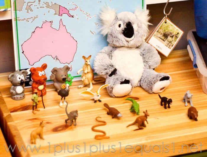 Australia Continent Box -8310