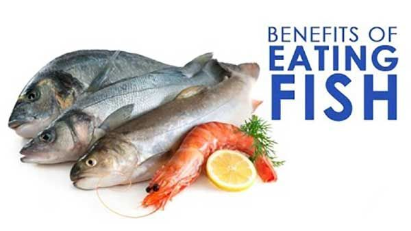 The fishes are an excellent source of omega 3 fatty acids - EPA (Eicosapentaenoic Acid) and DHA (Docosahexaenoic Acid), whereas saturated fat concentrations are very low.