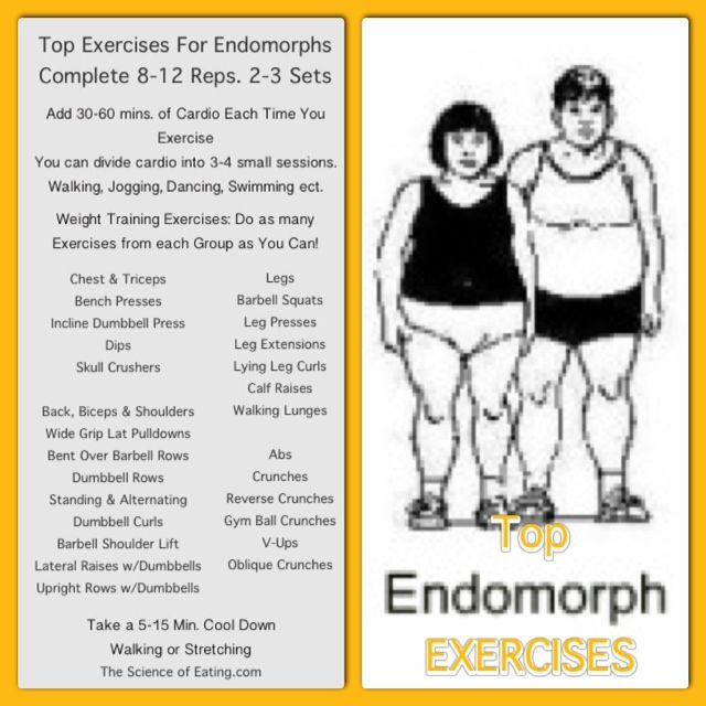 Workout Endomorph Body Type - it's sucks being a endomorph
