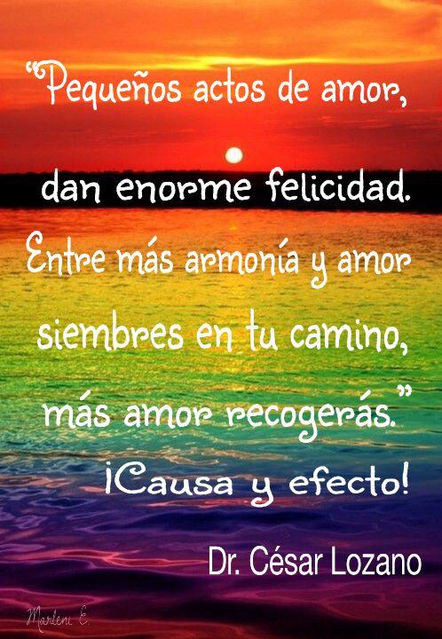 """""""Pequeños actos de amor, dan enorme felicidad.  Entre mas armonía y amor siembres en tu camino, más amor recogerás."""" ¡Causa y efecto!      Dr. César Lozano #MarleniEscobar"""