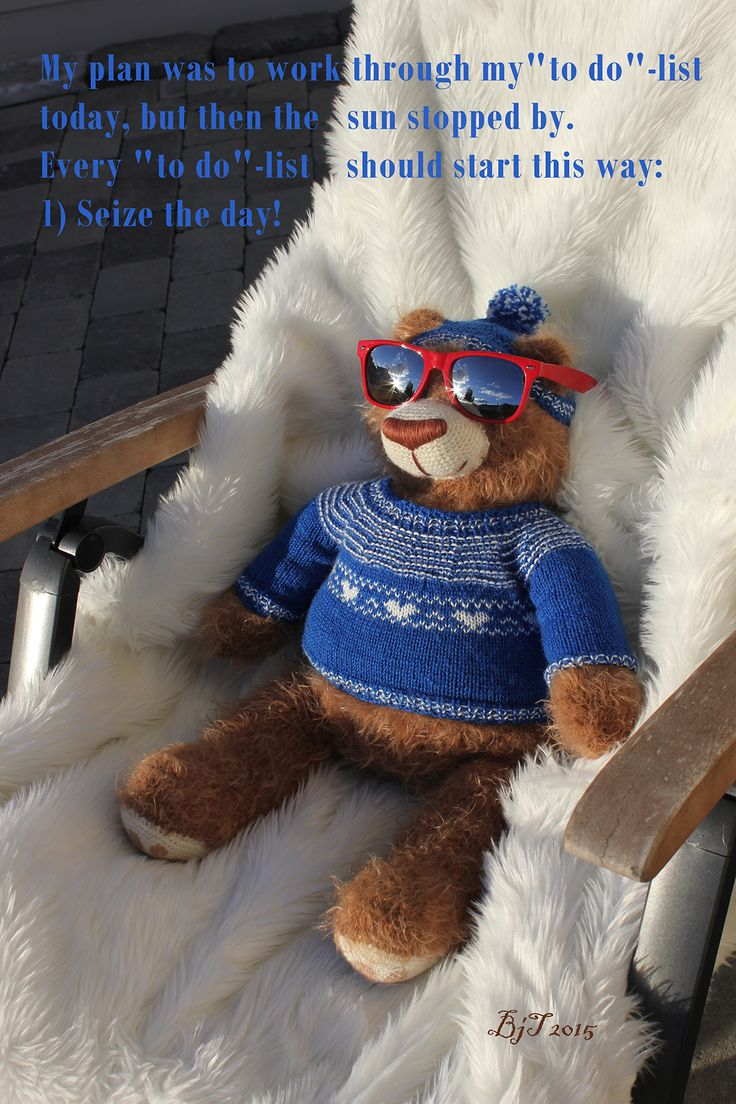 Tor the Bear, seize the day, Norway, teddybear, sun, sunglasses, wisdom, quotes