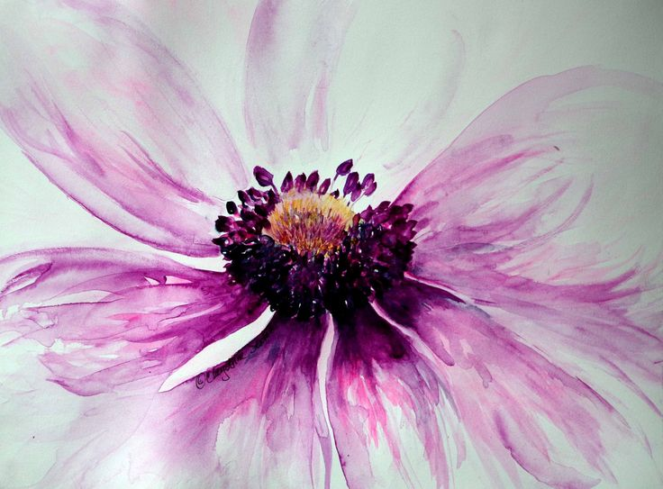 Tattoo Inspiration//Anemone flower art purple pink sweet blossom - original watercolor