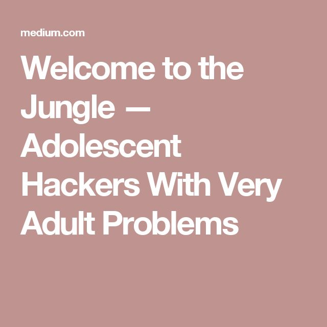 Welcome to the Jungle — Adolescent Hackers With Very Adult Problems