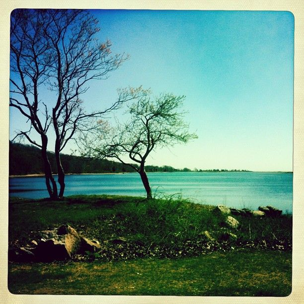 Bluff Point State Park in Groton, CT offers the visitor a delightful mixture of wooded hiking and biking trails coupled with spectacular wildlife viewing on Long Island Sound.