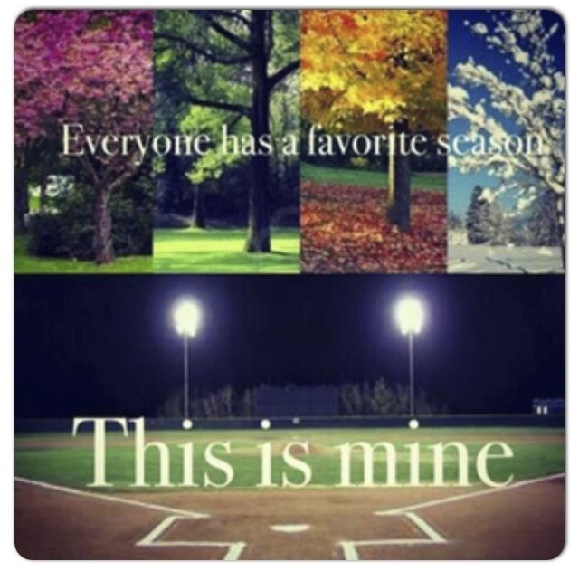 This is pretty cool! I would have all the seasons like that on top & have a pic of a baseball field, football field & basketball court on bottom!