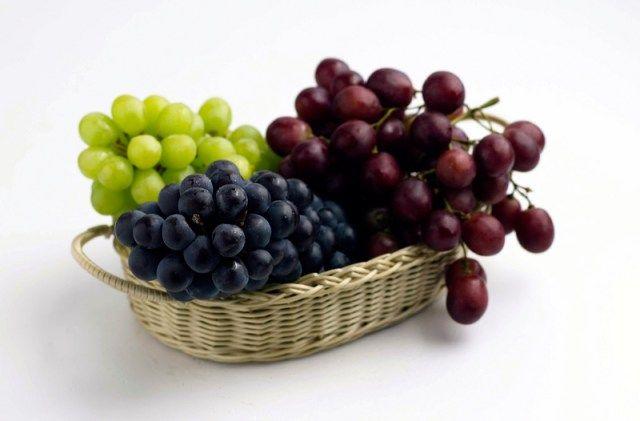 Buah Anggur Untuk Obat Pankreas Yang Rusak Penyebab Diabetes