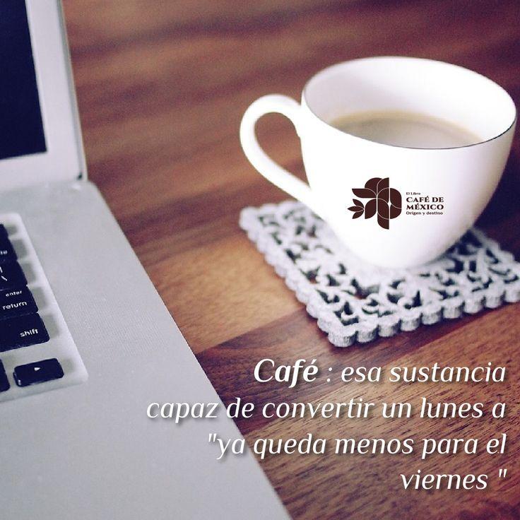 """""""Café, esa sustancia capaz de convertir un lunes  a """"ya queda menos para el viernes"""""""