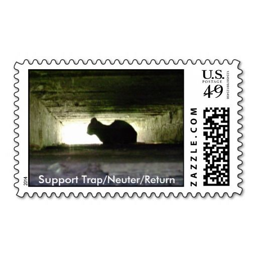 >>>Best          	Support Trap/Neuter/Return Postage Stamps           	Support Trap/Neuter/Return Postage Stamps today price drop and special promotion. Get The best buyThis Deals          	Support Trap/Neuter/Return Postage Stamps Review on the This website by click the button below...Cleck Hot Deals >>> http://www.zazzle.com/support_trap_neuter_return_postage_stamps-172226272481141772?rf=238627982471231924&zbar=1&tc=terrest
