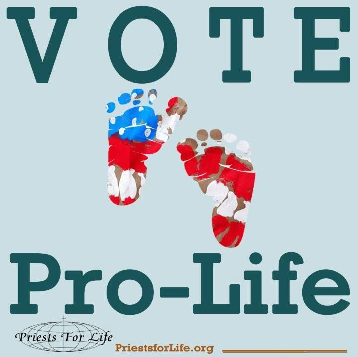 """Pro-Life, Because its guaranteed in the constitution.  If it wasn't, everyone has a list of people that makes their life """"too hard"""" and we could just start killing each other over it."""