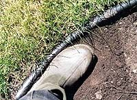 Don't install plastic landscape edging improperly. | Renegade Gardener