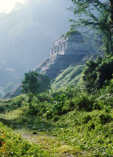 En el medio del selvático paisaje de #Chiapas se …