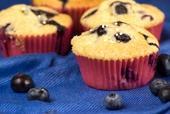 Blueberry - Muffin. Das ist etwas für die Kinder, aber auch für Erwachsene; wer kennt und liebt sie nicht?