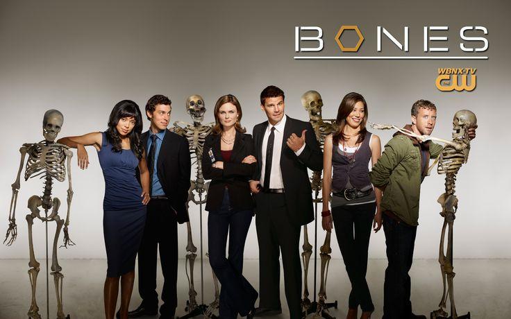 The 50 Best Episodes of the Crime Drama Bones Part 2