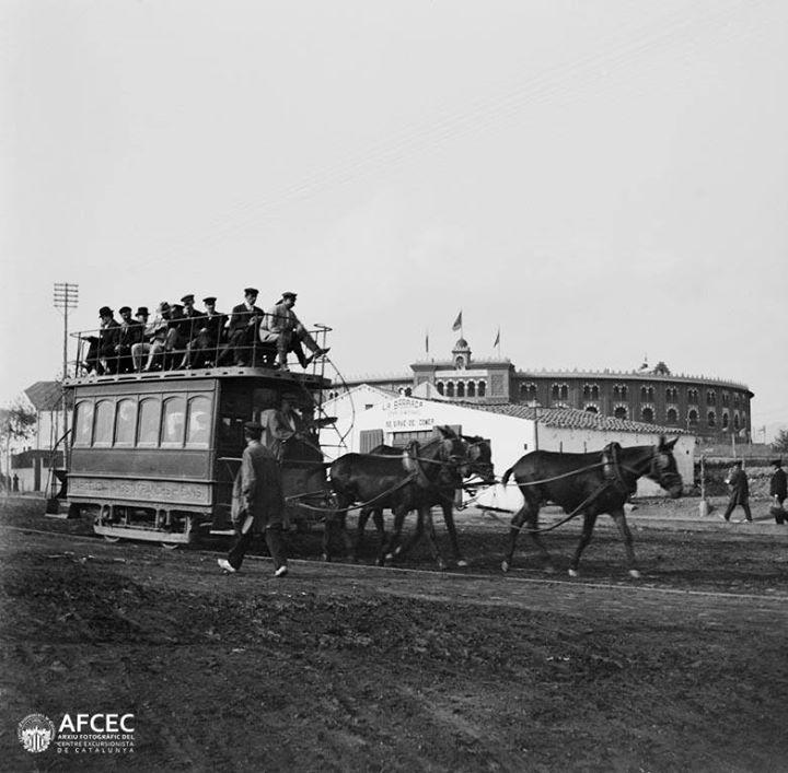 Tranvía de caballos en plaza España,  1900-1905