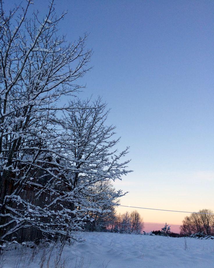 Зима в Норвегии🤗❄️