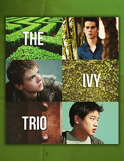Thomas, Newt, and Minho from The Maze Runner
