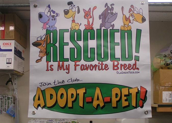 """HIGH QUALITY BANNERS ~ Now Available!..~.. Full Color, Durable, """"Outdoor Rated"""" Banners that will stand up to years of use. Each is hemmed & has grommets in each corner for easy hanging. Great for Adoption Events, Pet Fairs, etc.. These banners will ATTRACT ATTENTION & get people to visit your booth. Available in 2'x2' (35dollars) & 3'x3' (45dollars). We can use ANY of our t-shirt designs to create banners, just ask! For More Information visit http://www.rescuedismyfavoritebreed.org/Banners.htm: Pet Fair, Pet Adoption, Full Colors"""