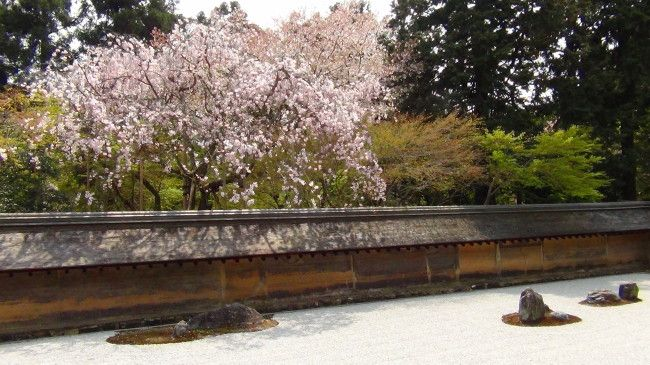 niwaki taille japonaise jardin japonais frederique dumas voyage d'etudes au japon tsubo-niwa jardin shizen no sei