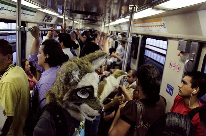 The Furros Nuevo Leon group go about their lives dressed as wolves in Monterrey, Mexico. The group has about 71 members, most of whom are graphic designers or studying graphic arts and animation. They are part of the subculture known as furry fandom, furrydom or fur fandom, whose members dress like animal characters.