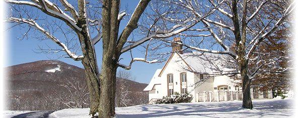 Stonebridge Inn - Elk Mountain, PA