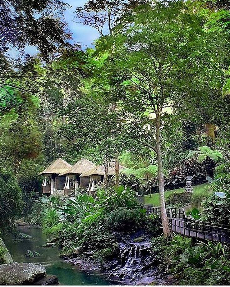 Maya Ubud Resort & Spa, Luxurious 1 & 2 Bedroom Villa - Suite,