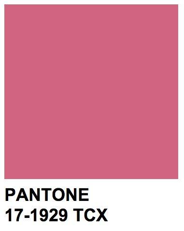 Pantone 17-1929 TCX  Color Name: Rapture Rose