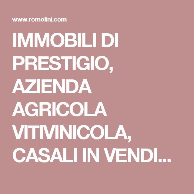 IMMOBILI DI PRESTIGIO, AZIENDA AGRICOLA VITIVINICOLA, CASALI IN VENDITA, CASTELLI, CASE DI LUSSO, AGRITURISMI,VILLE DI LUSSO.