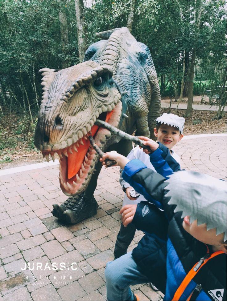 Miss Riley playing with the boys at Reed's party yesterday. 1/9/16 #JurassicExtreme #WalkingDinosaurs #HoustonDinosaurs #WoodlandsTX #Texas #Velociraptor #Dinosaur