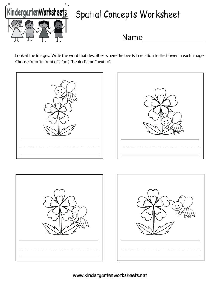 19 best images about Social Studies Worksheets and ...