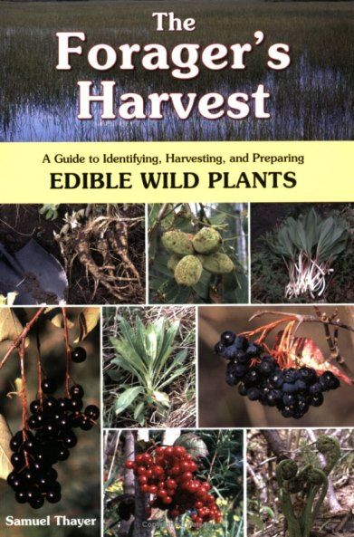 The Forager's Harvest: A Guide to Identifying, Harvesting, and Preparing Edible Wild Plants Book | #foraging